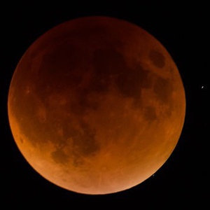 I mean if everyone else has theirs here I should probably share mine too, yes? #supermoon #lunareclipse