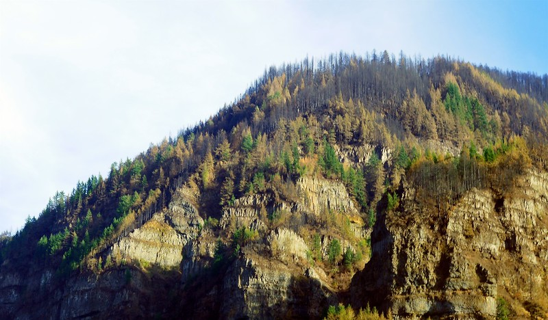 Eagle Creek Fire Damage  252.jpg
