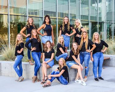 2018-2019 SFHS Dance Co