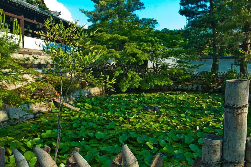 Uji - Mampuku-ji Temple-26.jpg
