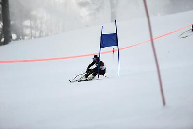 2014 WA Alpine Ski Team