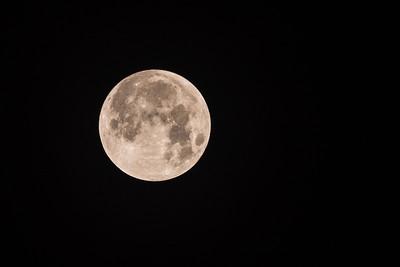 2018-01-31 Super Lunar Eclipse