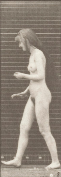 Nude woman inside toilet, brushing hair and walking off
