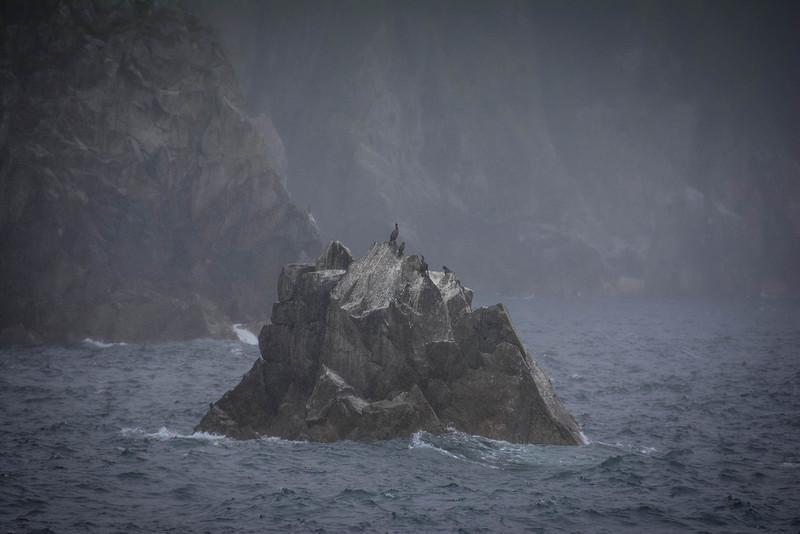 Kenai-Fjords-167.jpg