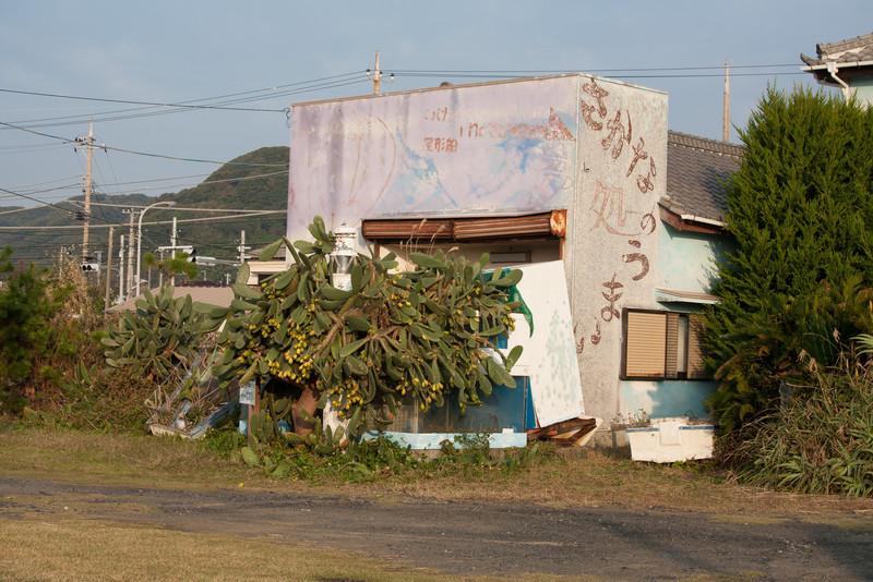 Shirahama Fall 2009