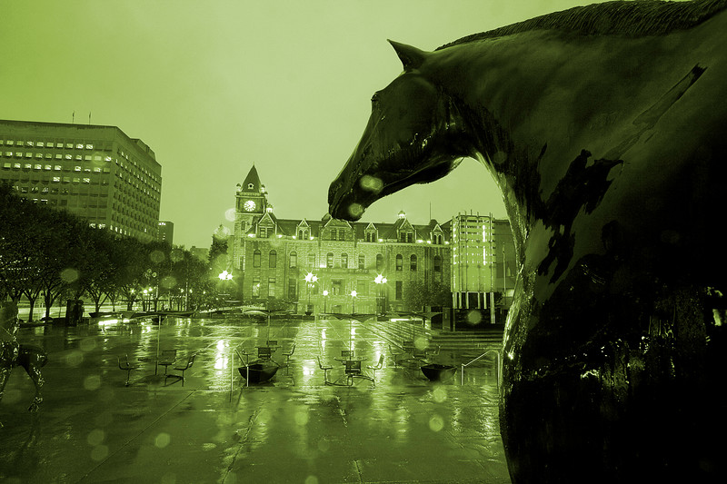 Horse statue in front of the Calgary Municipal Building looking at City Hall (monochromed)