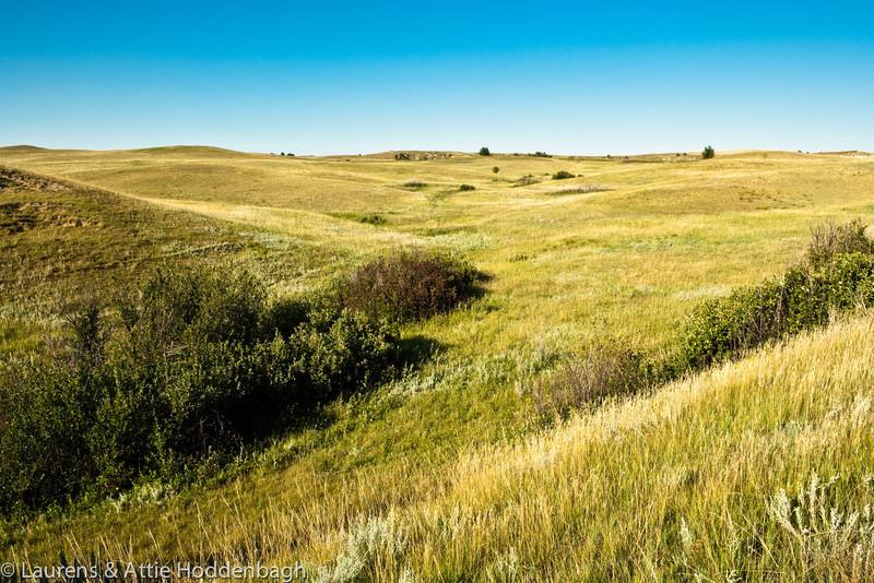 Grassland in Theodor Roosevelt NP, North Unit, ND  Filename: CEM009450-TRNP-ND-USA.jpg