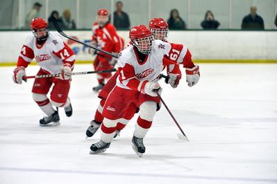 Michigan Ice Hawks