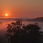 Cool foggy morning in Kentucky with the warm glow of the rising sun lighting it up.