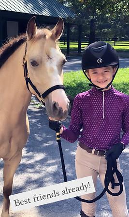 Grace Loves Horses