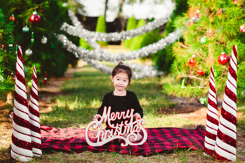 Karl Family Christmas Mini