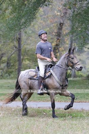 Hope for Horses-  30