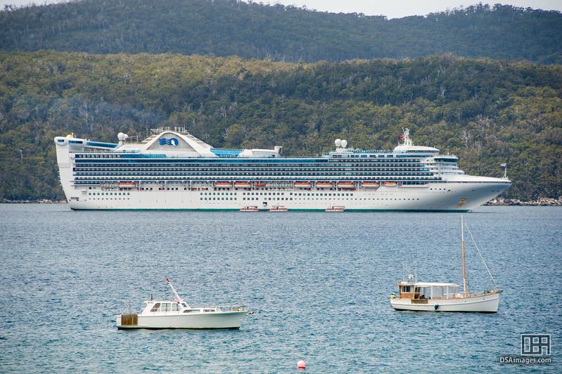 Golden Princess at Port Arthur
