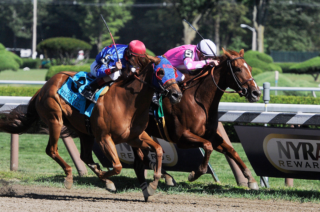 . With a short lead Sweet Lulu ridden by Julien Leparoux won the 88th Running of The Test Grade 1 Stakes at the Saratoga Race Course on Saturday.Photo Erica Miller/The Saratogian 8/24/13 TheTestEM1