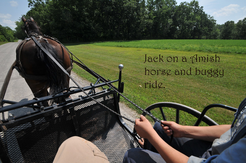 Amish buggy ride.jpg