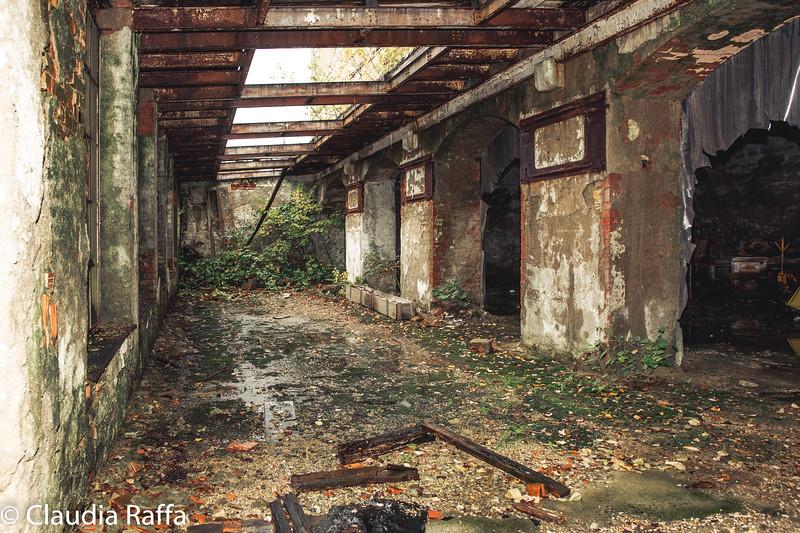 Safenwil-00996.jpg