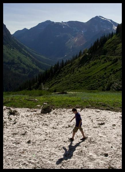 Sasquatch - Glacier National Park
