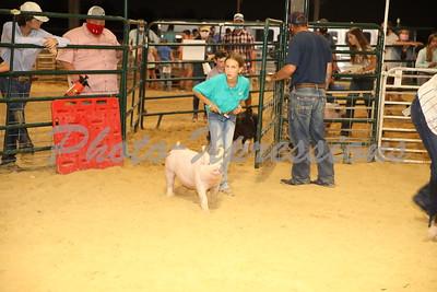 Swine 07-10-20