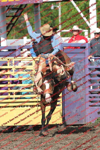 Saturday Saddle Bronc