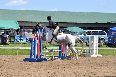 Horses & Equine Events