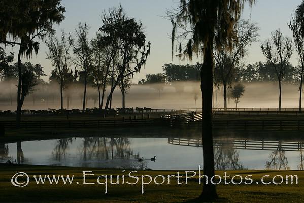 Florida Farm '07-'08