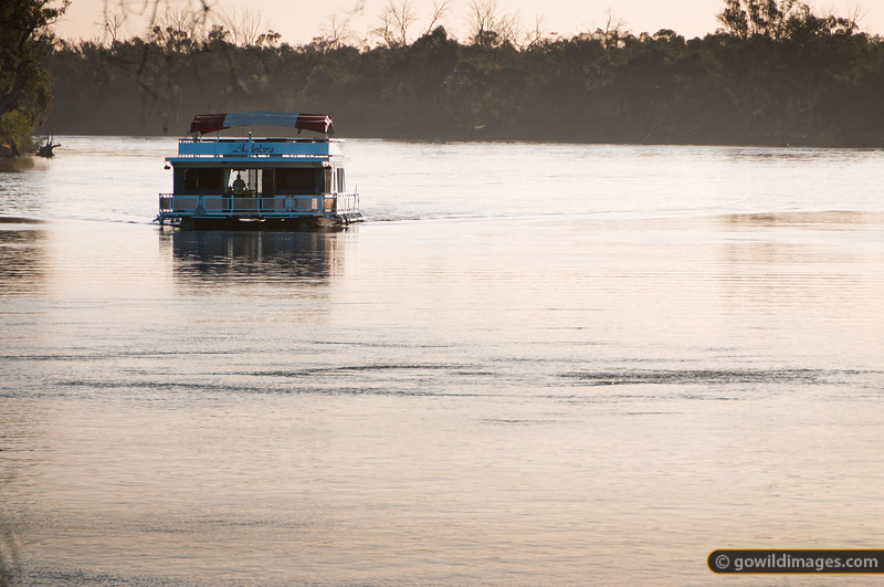 The house boat 'Adelora' cruises the Murray River near Mildura. Other angles available.