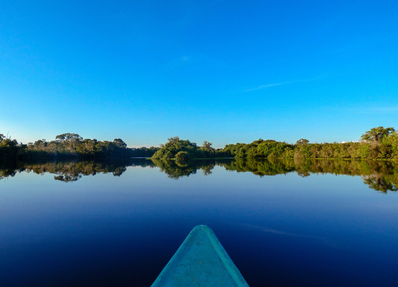 Paddling through the Pantanal in Brazil.png