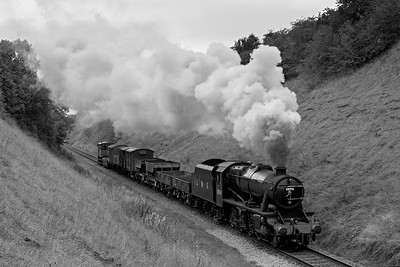8F #8274 steams through the cutting  near Stanford-on-Soar with a short freight BW