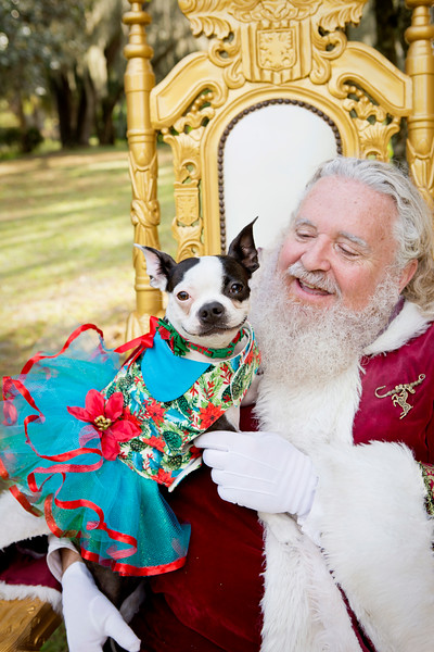 Santa Minis 2018: Luna and Brianna!