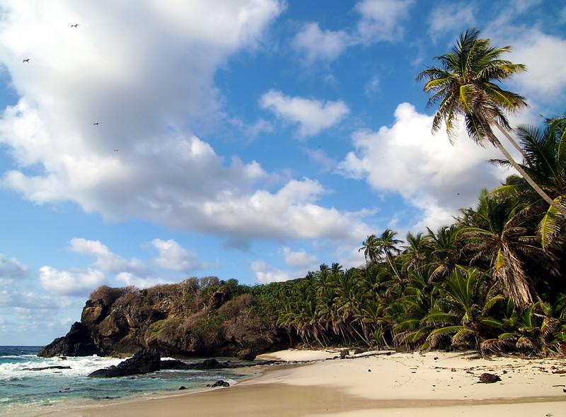Image Title: Dolly Beach_2.  Image No. p7295954b
