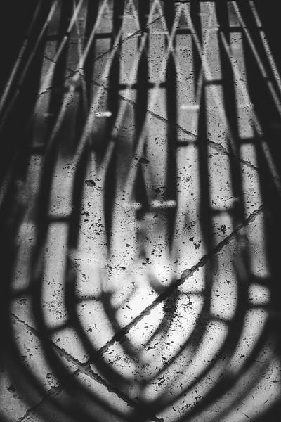 Digital Photography III ~ Lydia Fan