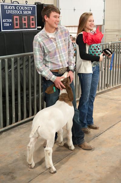 Hays County Show-9824.jpg