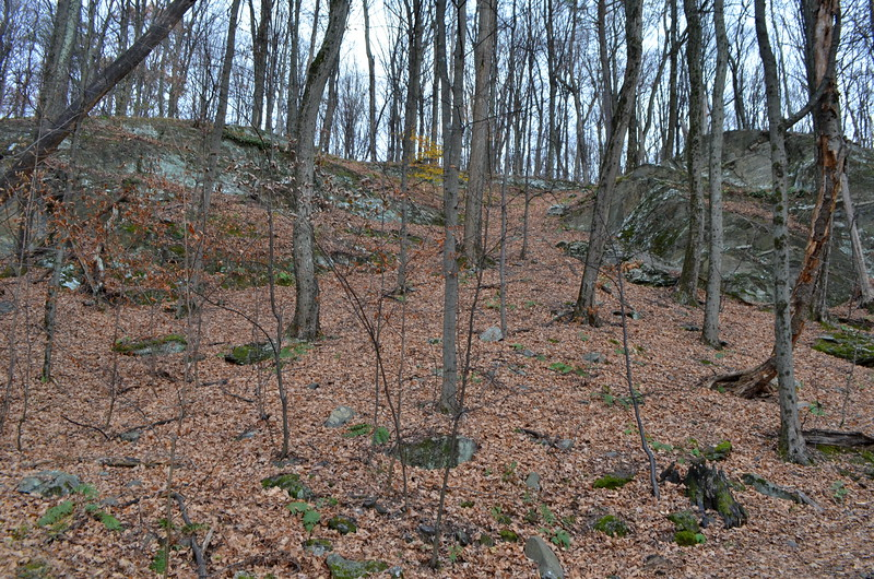Without the trail - you would need to climb this hill.