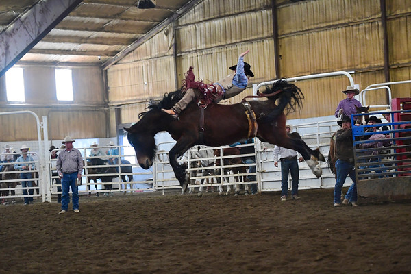 District 7 Spring Jackpot Rodeo