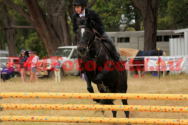 2011 11 13 Chidlow ShowJumping 75cm