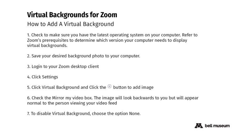 zoom-backgrounds-instructions.png