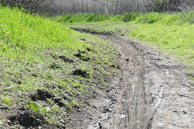 Trail conditions Dec27th2010