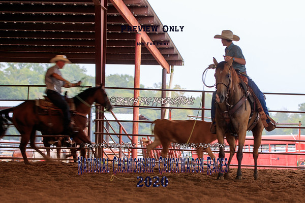 Team Roping Clinic