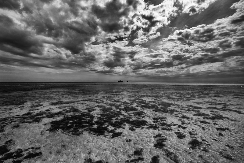 Florida - Bahai Honda Horizon-1.jpg