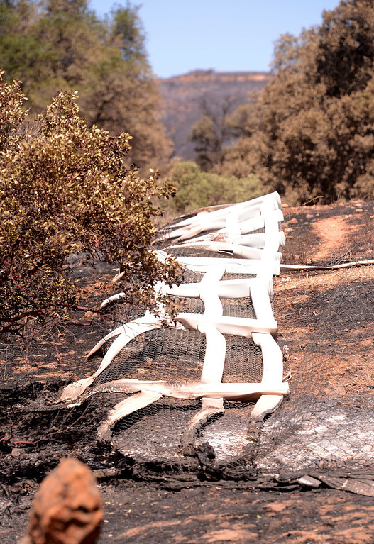 . A view of fencing that was melted by the Silver Fire as seen near Twin Pines Road in the mountains south of Banning August 10, 2013.   GABRIEL LUIS ACOSTA/STAFF PHOTOTGRAPHER.