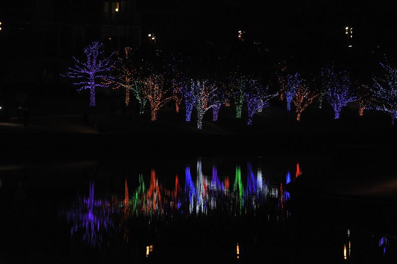 Christmas2019-847.JPG