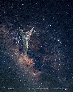 Night Sky Angels & Statues