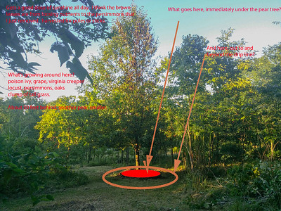 Permaculture interventions