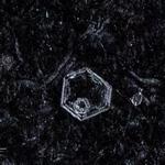 snowflakes-1661.jpg