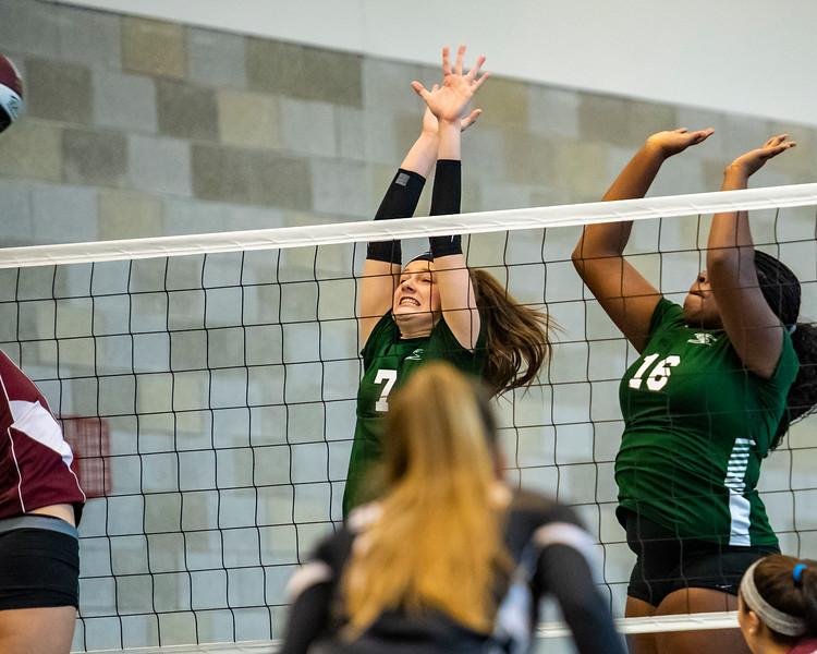 2018-Stvenson_Lady's_Volleyball-66.jpg