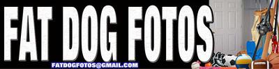 FatDog Closet Door 576x144 w EMAIL