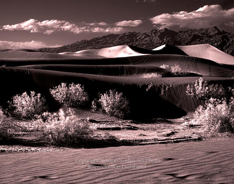 Sand Dunes Infrared Sepia