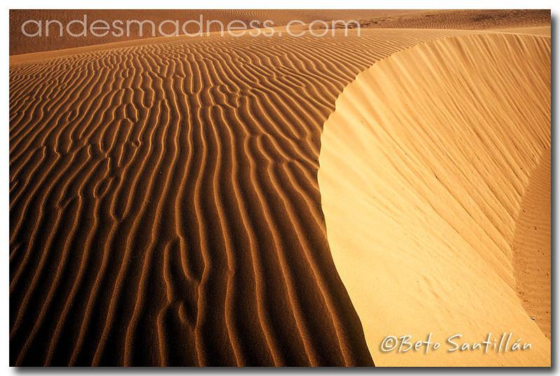 ECO 4x4 2 TRIP desert 2002 a1++.jpg