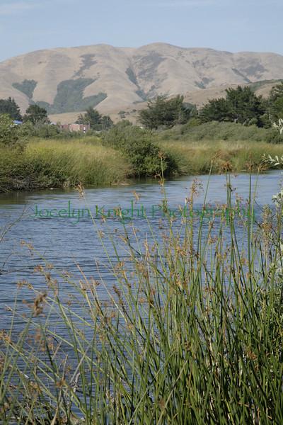 Giacomini Wetlands