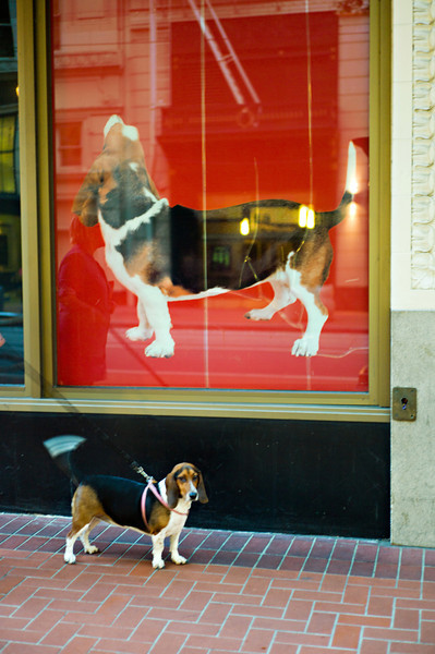Suki and her doppelganger, Macy's window advertisement in Downtown Portland.